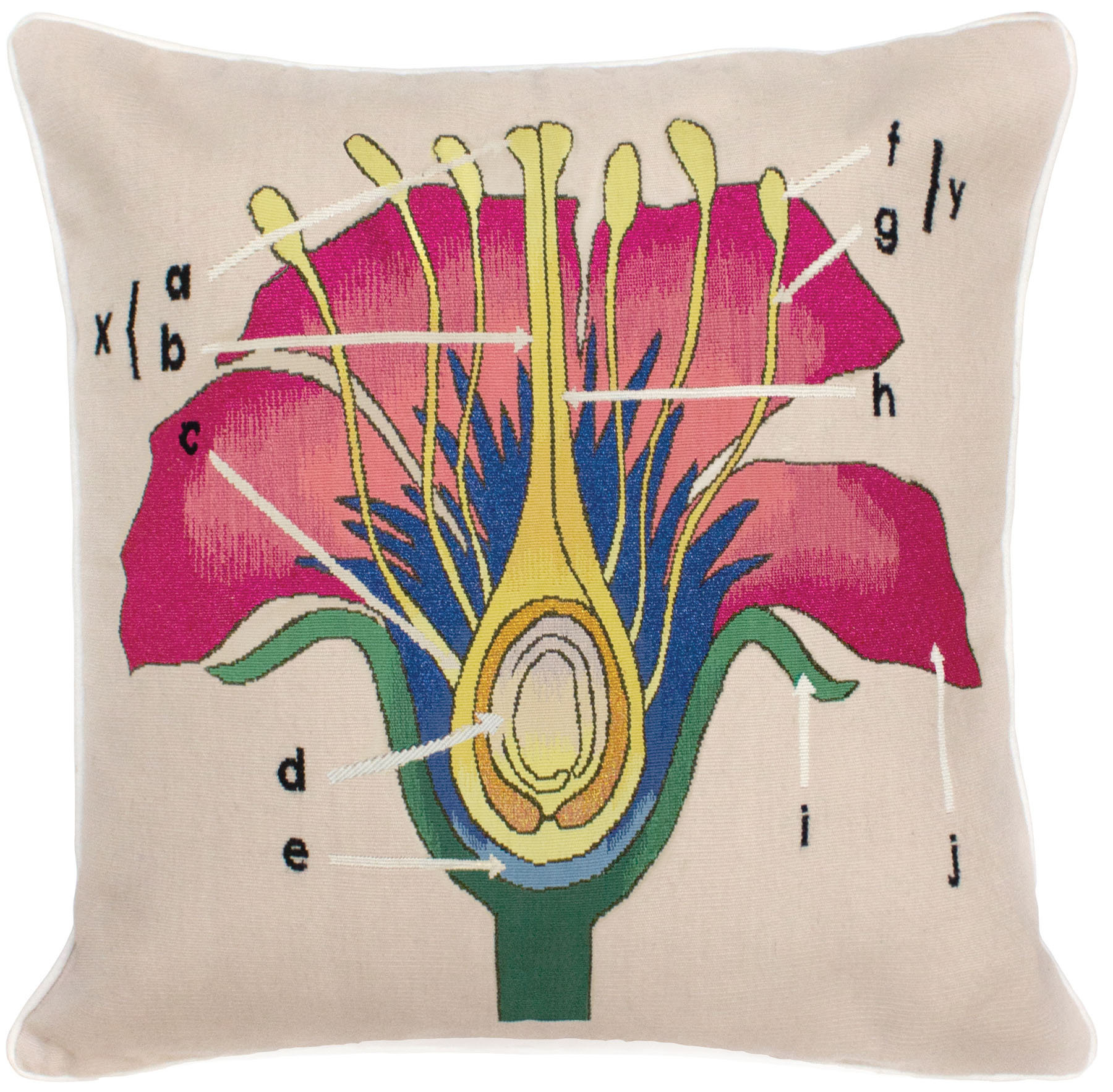 Christopher Kane Botanical Anatomy Cushion Floral Pink/Cream Wool Floral by The Rug Company